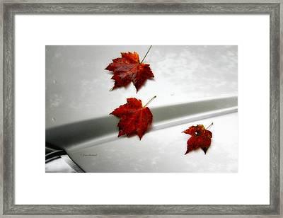 Autumn On The Car Framed Print by Joan Bertucci