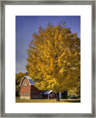 Autumn On The Farm Framed Print by Thomas Young