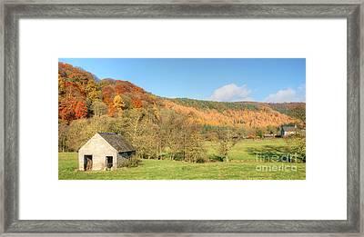 Autumn On The Hillside Framed Print by David Birchall
