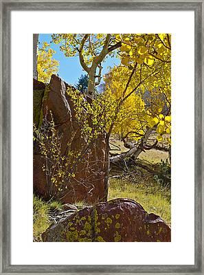 Autumn On The Hillside Framed Print by Gary Benson