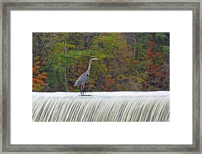 Autumn On The Maumee Framed Print by Cathy Cooley