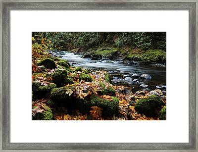 Autumn On The Salmon River, Welches Framed Print