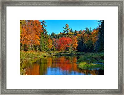 Autumn On The Upper Branch Of The Moose Framed Print by David Patterson