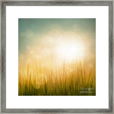 Autumn Or Summer Abstract Season Nature Background  Framed Print