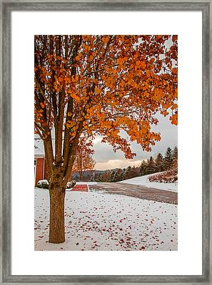 Autumn Or Winter Framed Print by April Reppucci