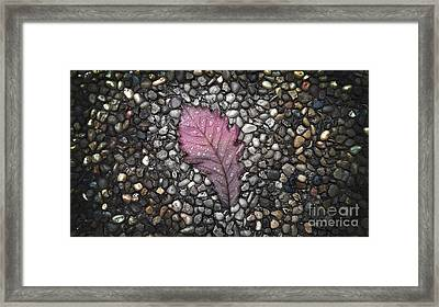 Autumn Out Framed Print by Jose Benavides