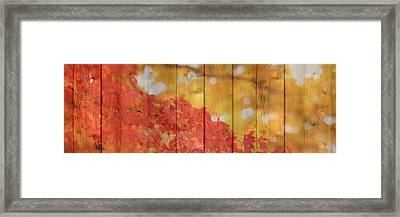 Autumn Outdoors 1 Of 2 Framed Print
