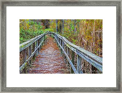 Autumn Outdoors Framed Print by Barry Jones