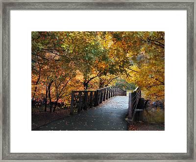 Autumn Overpass Framed Print