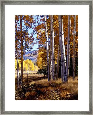 Autumn Paint Chama New Mexico Framed Print by Kurt Van Wagner