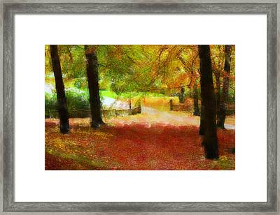 Autumn Park With Trees Of Beech Framed Print