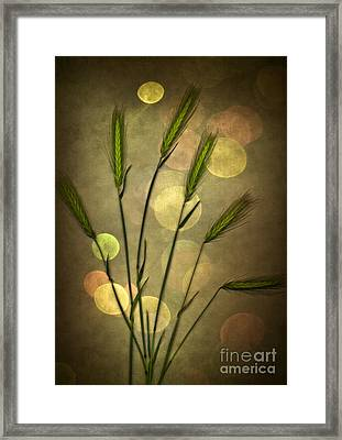 Autumn Party Framed Print by Jan Bickerton