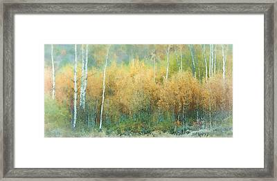 Autumn Pastels Framed Print