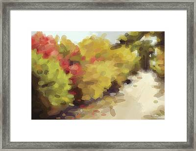 Autumn Path Central Park New York Framed Print by Beverly Brown