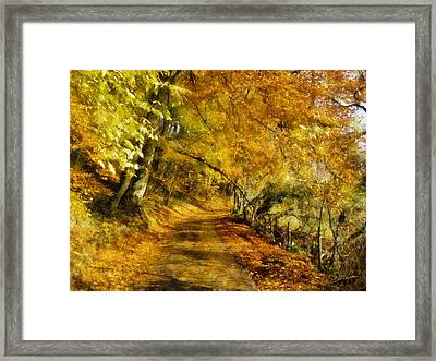 Autumn Path Framed Print by Dale Jackson