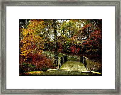 Framed Print featuring the photograph Autumn Peace by James C Thomas