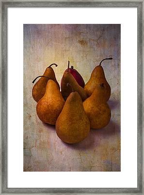 Autumn Pears Framed Print