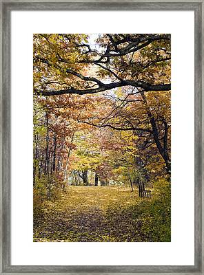 Autumn Pedestrian Path Framed Print