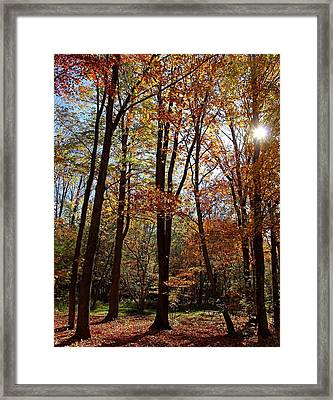 Framed Print featuring the photograph Autumn Picnic by Debbie Oppermann