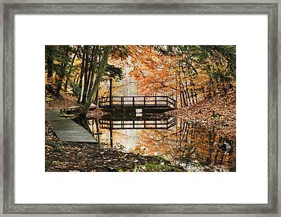 Autumn Pleasure Framed Print by Christina Rollo