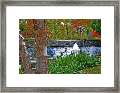 Framed Print featuring the photograph Autumn Pond Another View by Andy Lawless