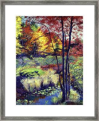 Autumn Pond Framed Print by David Lloyd Glover