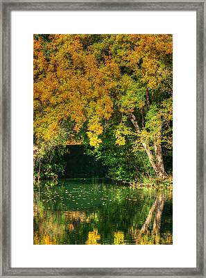 Autumn Pond Framed Print by Ester  Rogers