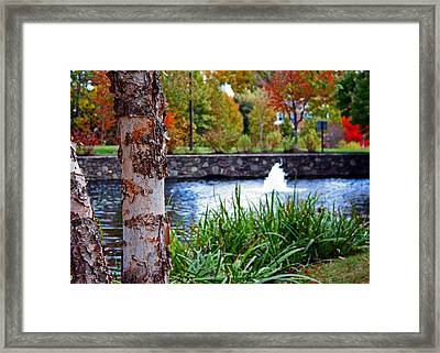 Framed Print featuring the photograph Autumn Pond by Andy Lawless