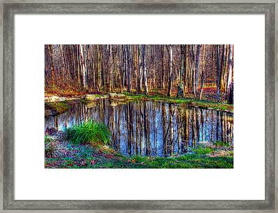 Autumn Pond Reflections Framed Print