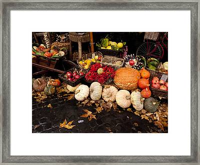 Autumn Produce Framed Print by Rae Tucker