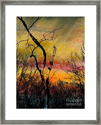 Autumn Rain Framed Print by R Kyllo