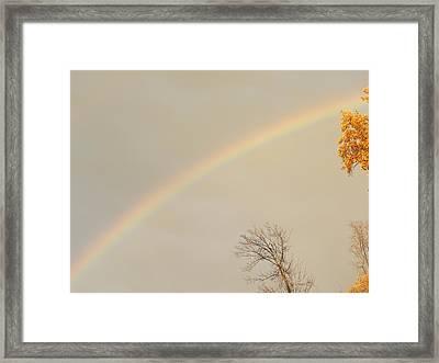 Autumn Rainbow Framed Print by Cim Paddock