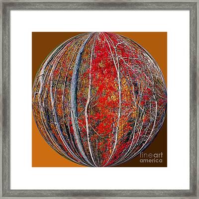 Autumn Reds Framed Print by Scott Cameron