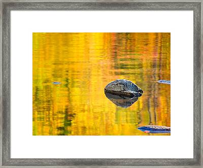 Autumn Reflected Framed Print by Joan Herwig