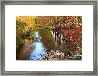 Autumn Reflection Framed Print by Dora Sofia Caputo Photographic Art and Design