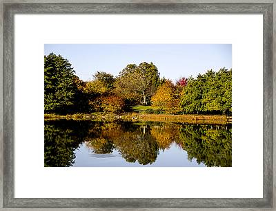 Autumn Reflection In The Garden Framed Print by Julie Palencia