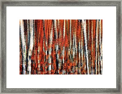 Autumn Reflection Framed Print by Marcia Colelli