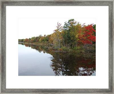 Autumn Reflection Framed Print by Margaret McDermott