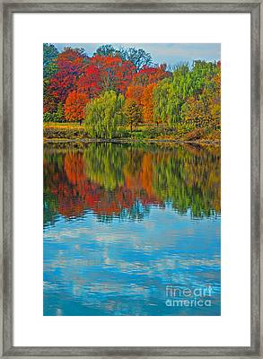 Autumn Reflection Framed Print by Todd Breitling