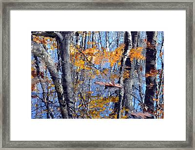 Autumn Reflection With Leaf Framed Print