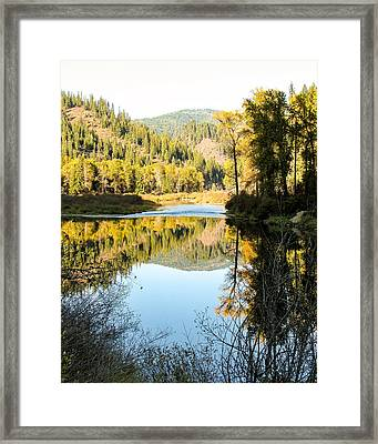 Autumn Reflections 3 Framed Print by Curtis Stein