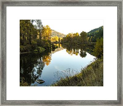 Autumn Reflections 4 Framed Print by Curtis Stein
