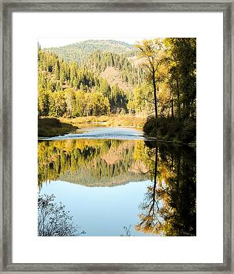 Autumn Reflections 5 Framed Print by Curtis Stein