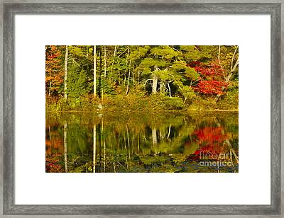 Framed Print featuring the photograph Autumn Reflections by Alice Mainville
