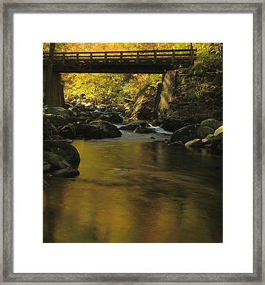 Autumn Reflections In Tennessee Framed Print by Dan Sproul