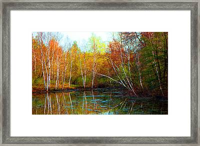 Autumn Reflections Framed Print by James Hammen
