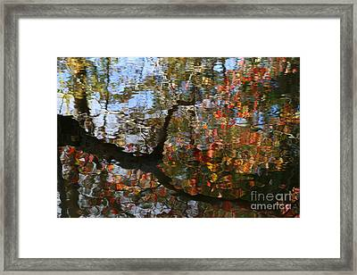 Autumn Reflections  Framed Print by Neal Eslinger