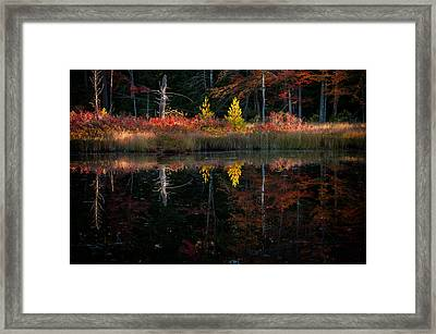 Autumn Reflections - Red Eagle Pond Framed Print by Thomas Schoeller