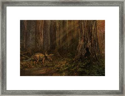 Autumn Refuge Framed Print by Angie Rodrigues
