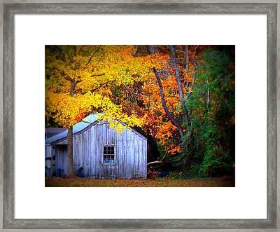 Autumn Rest Framed Print by Trish Clark